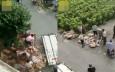貨車司機哭訴江蘇鹽城遇車禍 豬肉遭哄搶10噸只剩3噸