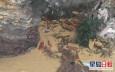 意大利海岸發生山體滑波  數百具棺材墜海