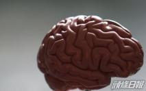 研究指新冠肺炎或損害腦部 13%患者半年後現精神疾病