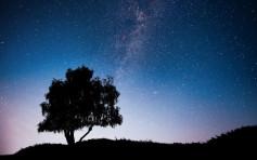 【環保教育】望星星