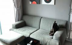 昇柏山品味雅裝 高層2房連家具