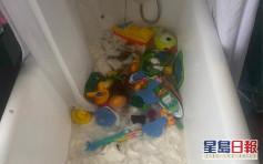 兒子將18卷廁紙丟浴缸變紙漿 英媽崩潰