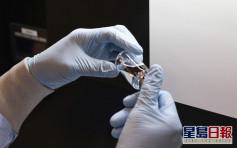 孟加拉生產瑞德西韋治新冠 藥劑價錢曝光
