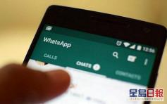 WhatsApp收紧限制每次讯息转寄上限 遏制疫情谣言
