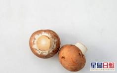 3人購菇類後烹調食物中毒 衞生署提醒烹煮不會破壞毒性
