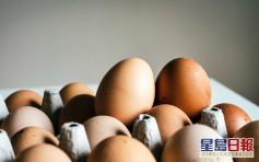 俄羅斯鄂木斯克州爆H5禽流感 食安中心暫停進口當地禽產品