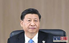 习近平将出席G20特别峰会 讨论应对疫情