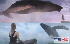 【指尖都有戏】 Sammi拍MV幻想与数十尺巨鲸互动