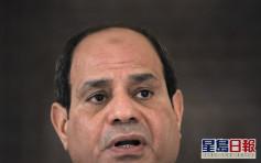 埃及国会开绿灯 总统塞西或军事介入邻国利比亚