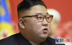 北韓禁止平壤民眾養狗 金正恩:腐敗資本主義文化