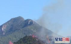 馬鞍山大水坑山頭冒煙 飛行服務隊擲水彈救火