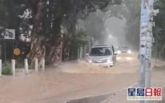 粉錦公路變黃河封閉汽車抛錨 來回一度擠塞