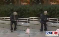 黃大仙94歲老翁狠拔野鴿羽毛涉虐畜被捕