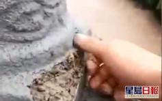 重慶欄杆暴雨後一捏就碎惹豆腐渣疑雲 當局調查