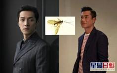 以胡歌古天樂姓氏命名新種:蟲子都變帥了