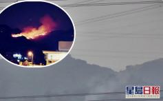 元朗大棠山火現場仍冒煙 環團憂毀15年前植樹林