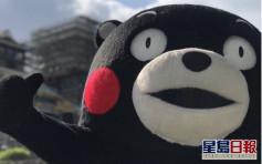 日本熊本熊復工到訪托兒所 宣傳抗疫生活方式