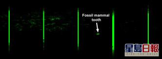 「激光盜龍」無人機產生的激光影像。圖片提供:Thomas G Kaye和文嘉棋。