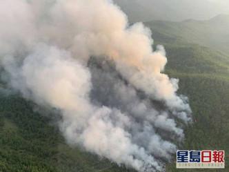 大興安嶺3天發生8宗森林大火。新華社